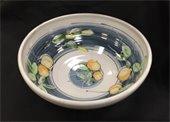 A Majolica pottery bowl